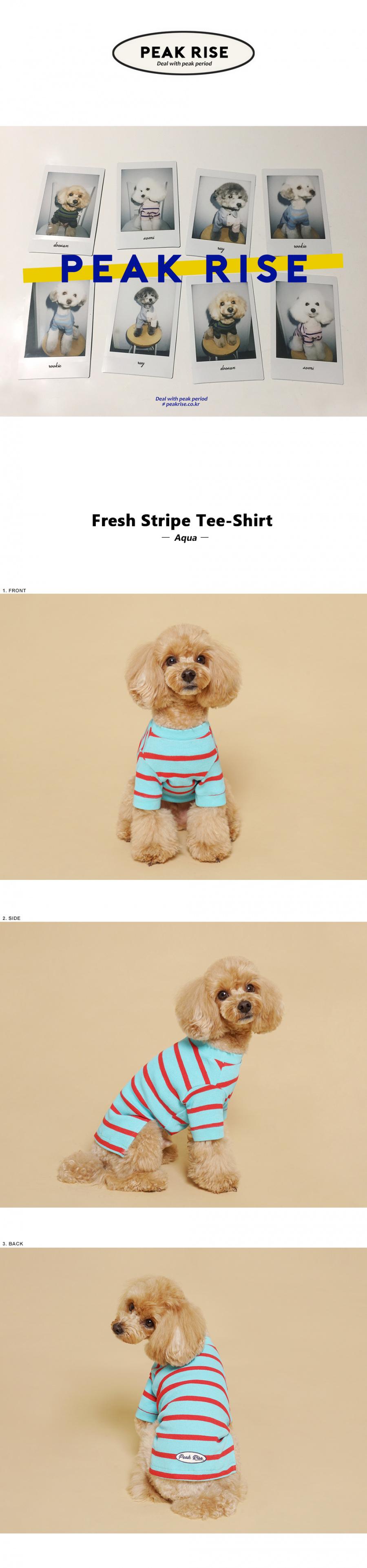 피크라이즈(PEAK RISE) Fresh Stripe Tee-Shirt Aqua