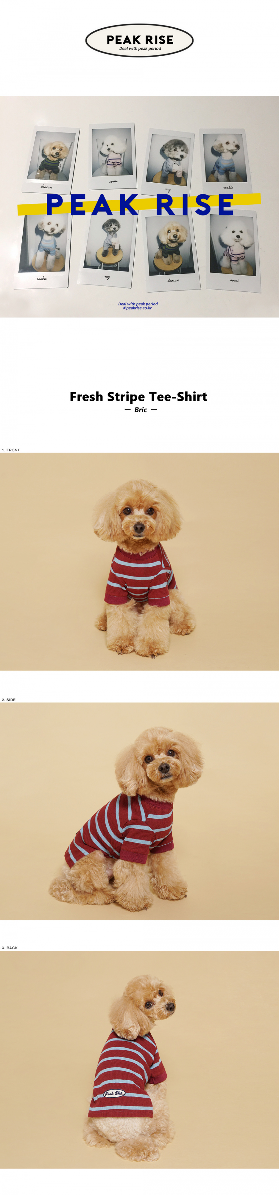 피크라이즈(PEAK RISE) Fresh Stripe Tee-Shirt Bric