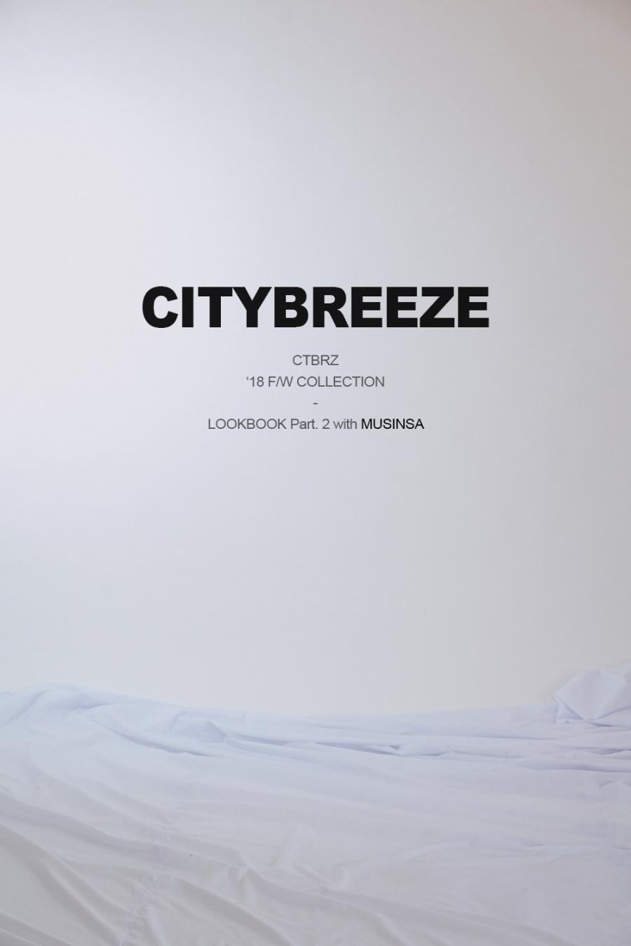 시티브리즈(CITY BREEZE) (CTA3) 베이직 로고 점퍼 블랙