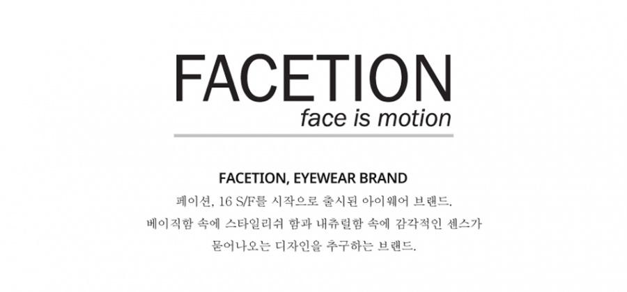 페이션(FACETION) 펜타곤케이스 (선글라스/안경보관함)