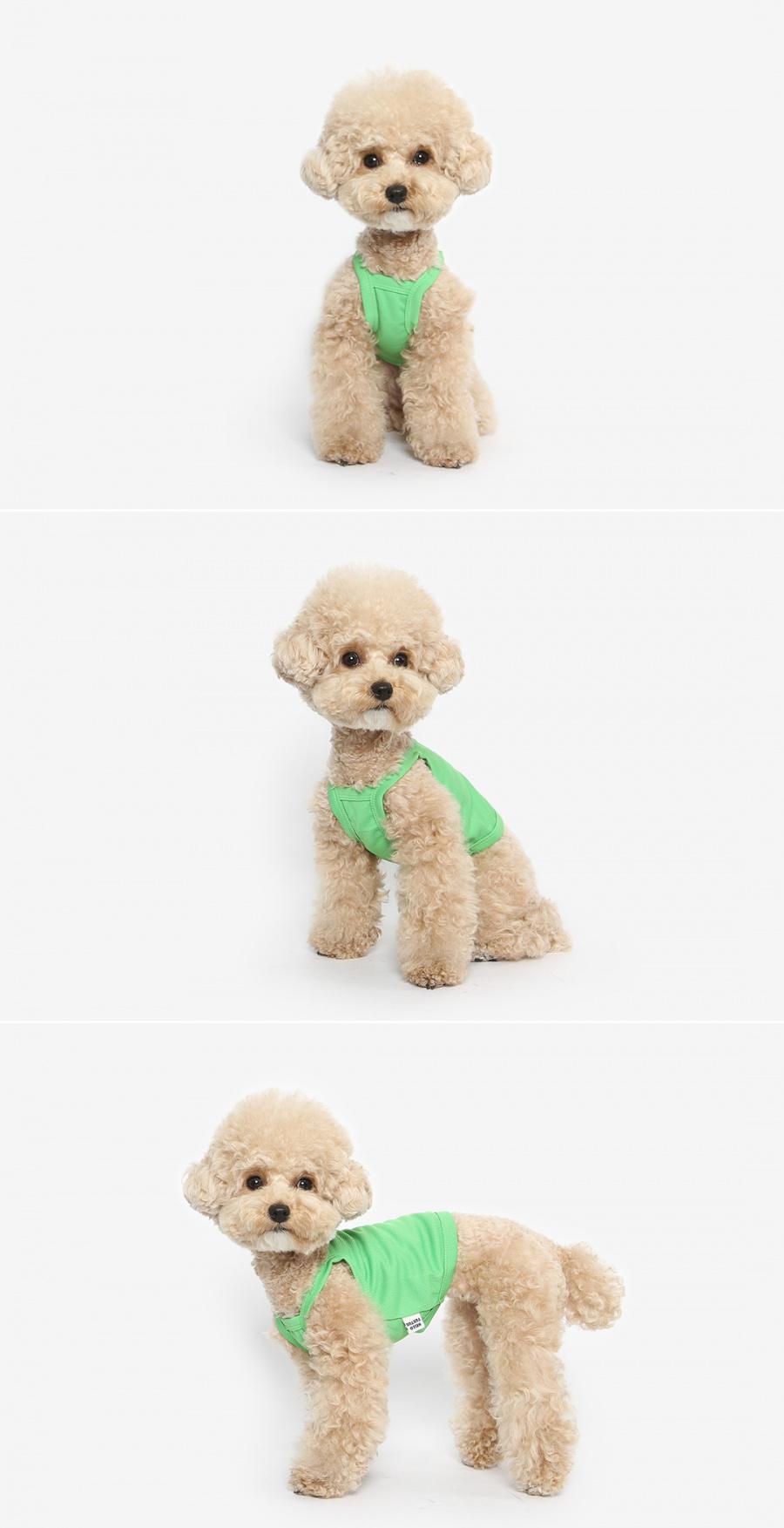 투스투스(TUSTUS) 강아지 쿨링 크롭 나시티 (그린)