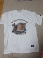 스컬프터(SCULPTOR) Kitten Boxy Tee [WHITE] 후기