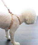 쌤프레 펫(SEMPRE PET) Buckle harness B natural
