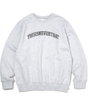 디스이즈네버댓(THISISNEVERTHAT) ARC-Logo Crewneck Light Grey